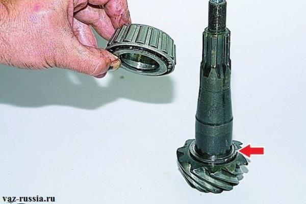 Стрелкой указано регулировочное кольцо которое после снятия кольца заднего подшипника нужно снять