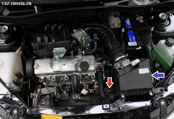 Красной стрелкой показано где находится автомобильный стартер, а синей стрелкой указан корпус воздушного фильтра который вам возможно в дальнейшем предстоит снять