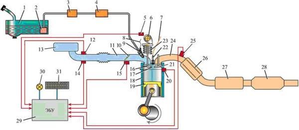 Схема расположения основных узлов системы впрыска топлива