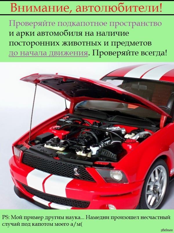 Двигатели лада стоимость