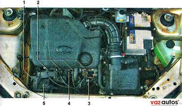 Моторный отсек автомобиля с 8-клапанным двигателем 1,6i