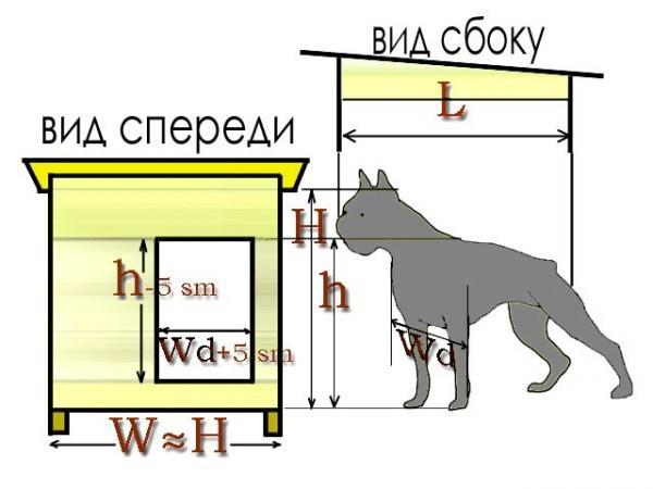 будка для собаки размеры